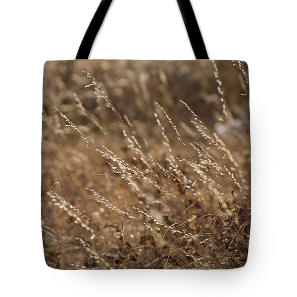 Warm Light On A Winter's Day Tote Bag