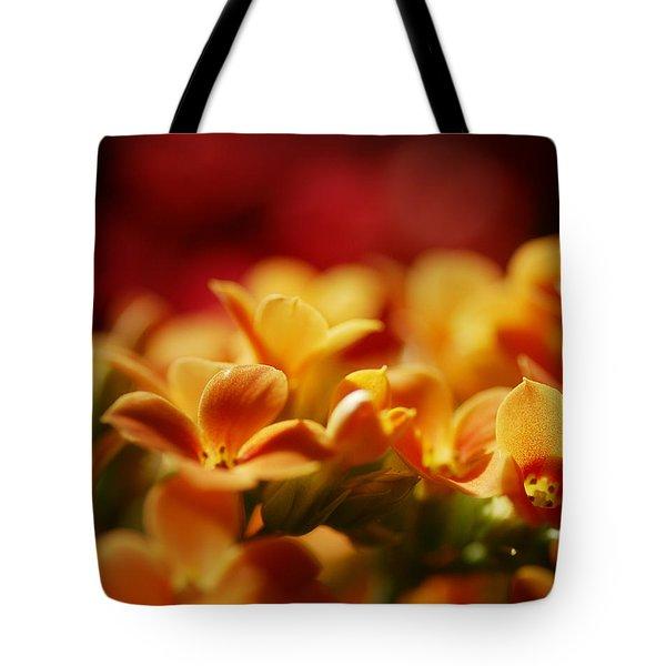 Warm Spring Glow Tote Bag