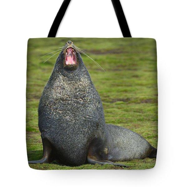 Warning Growl Tote Bag by Tony Beck