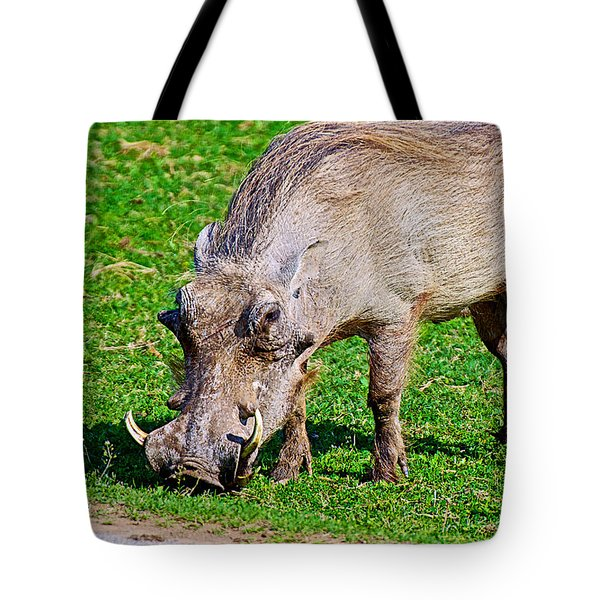 Warthog In Addo Elephant Park Near Port Elizabeth-south Africa  Tote Bag