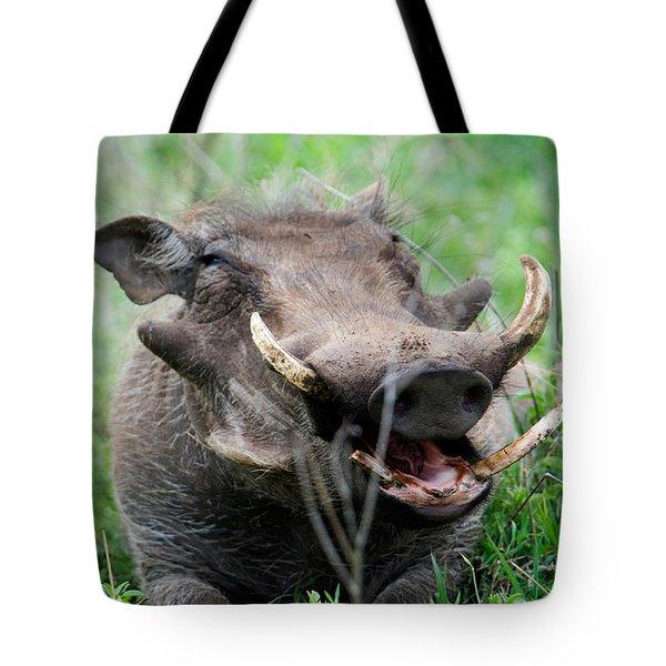 Warthog Phacochoerus Aethiopicus Tote Bag