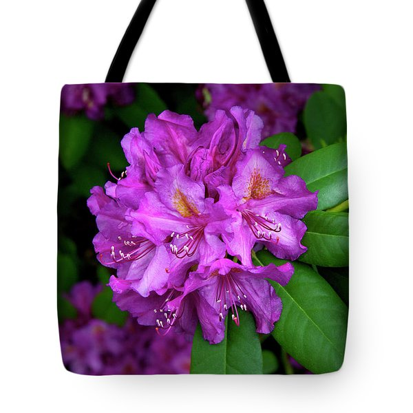 Washington Coastal Rhododendron Tote Bag by Ed  Riche