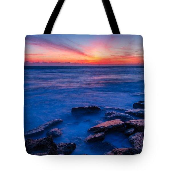 Washington Oaks Twilight Tote Bag