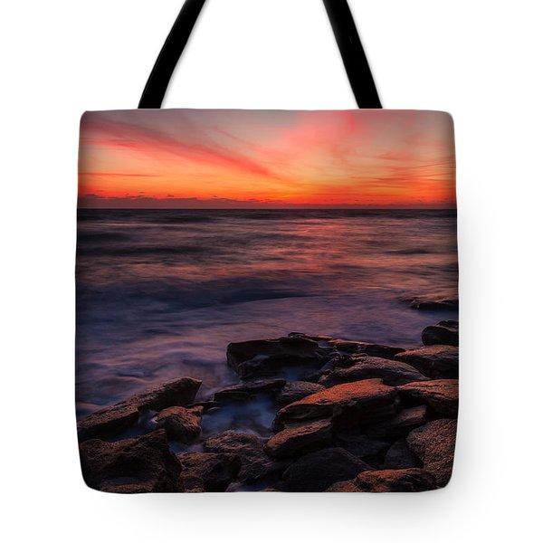 Washington Oaks Winter Sunrise Tote Bag