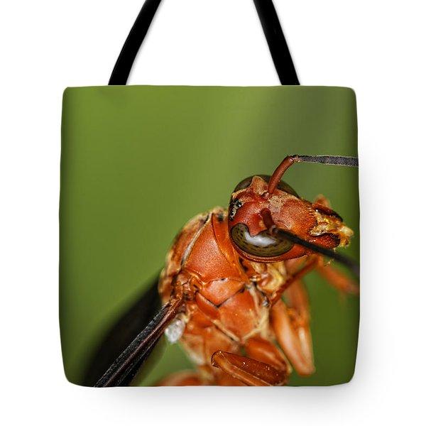 Wasp 1 Tote Bag