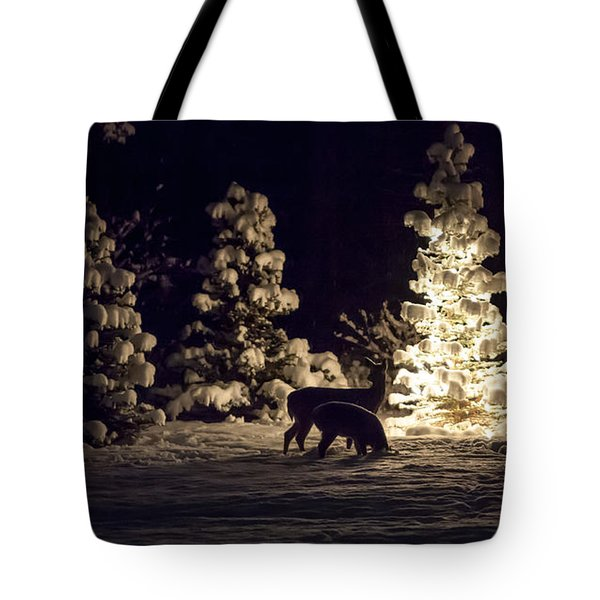 Watchful Eye Tote Bag by Aaron Aldrich