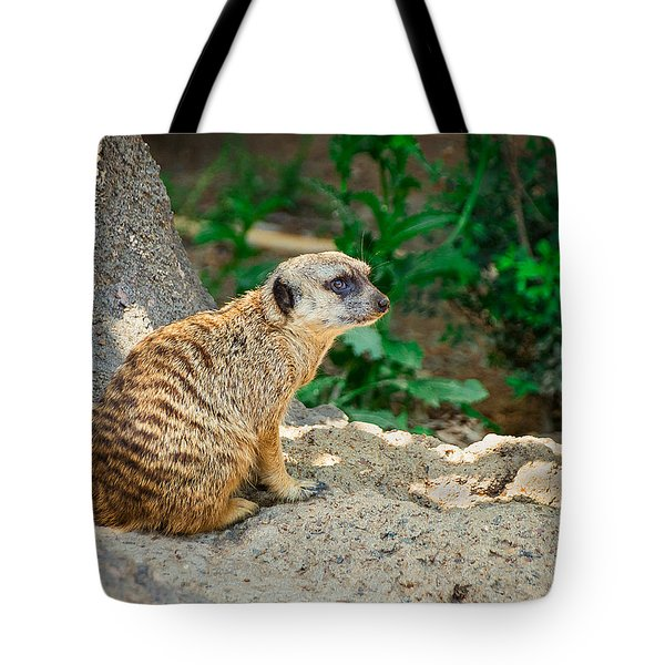 Watchful Meerkat Tote Bag