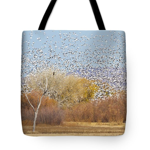Tote Bag featuring the photograph Watching Over The Flock by Bryan Keil