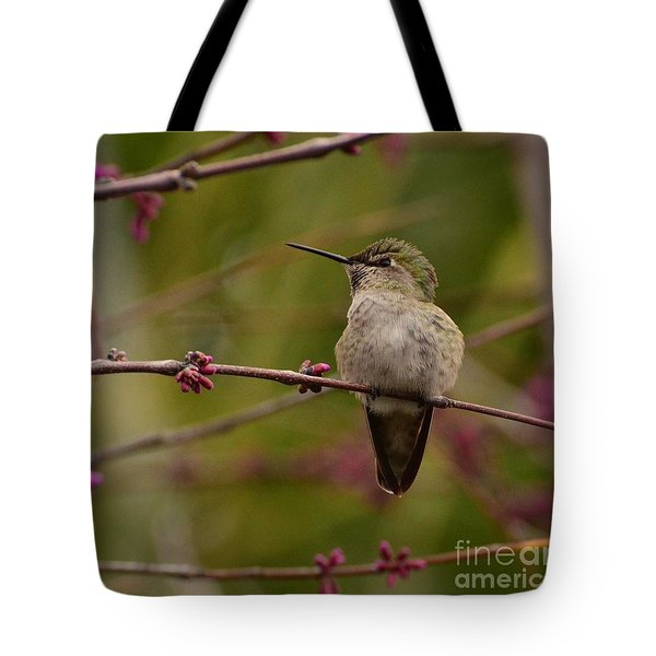 Watching Spring Arrive Tote Bag
