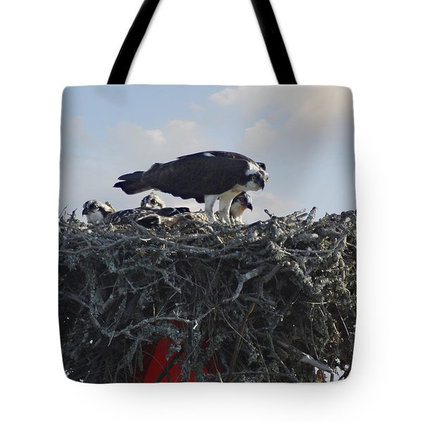 Watching The Kids - Ospreys Tote Bag