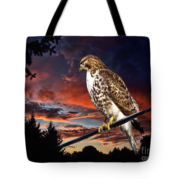 Watching The Sun Set Tote Bag by Andrea Kollo
