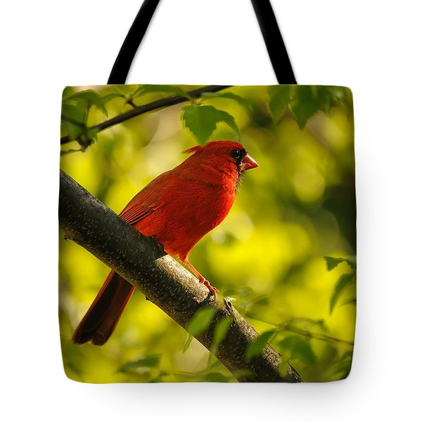 Watching The Sun Set Tote Bag by Lois Bryan