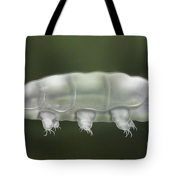 Water Bear Tardigrada - Waterbear Tardigrade  - Scientific Illustration Tote Bag
