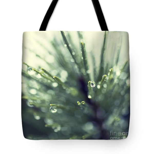 Tote Bag featuring the photograph Water Droplets On Fir Needles - Hipster Photo Square by Charmian Vistaunet