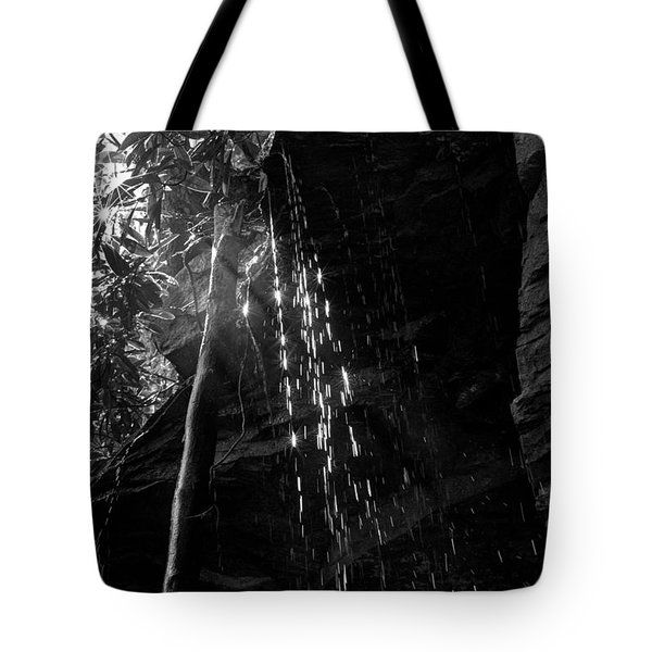 Water Drops After Storm Tote Bag by Dan Friend