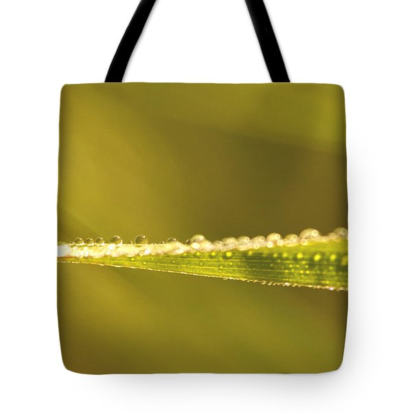 Water Drops On A Leaf Tote Bag by Peggy Collins