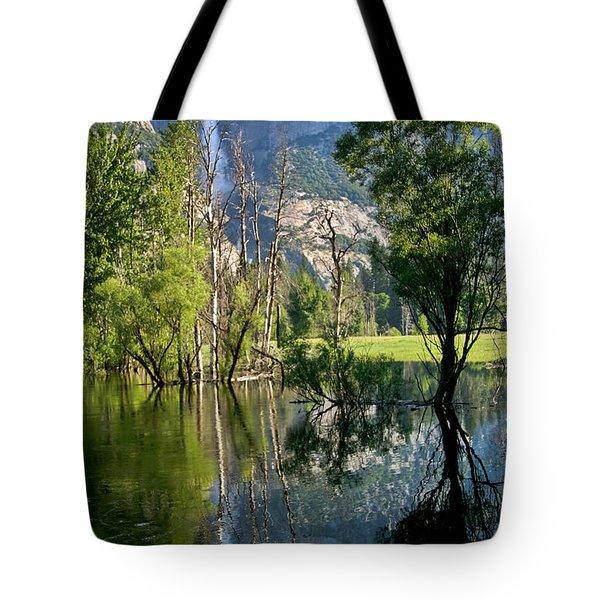 Water Fall Tote Bag by Menachem Ganon