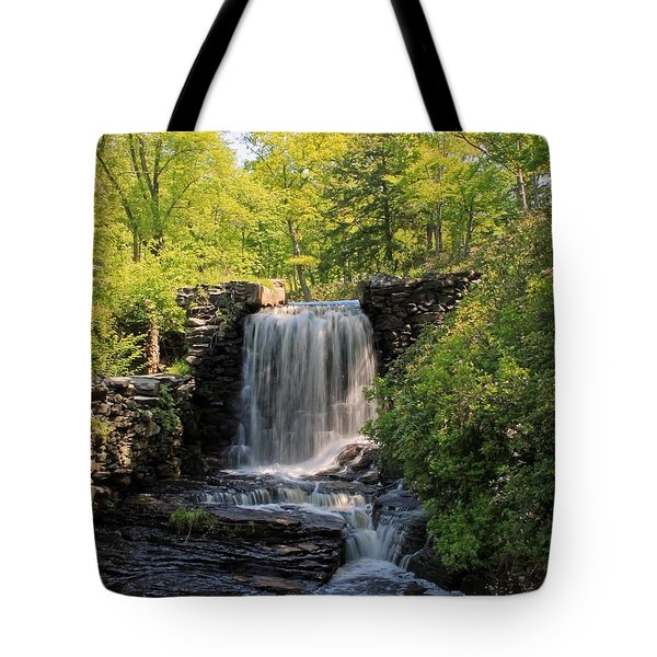 Water Fall Moore State Park 2 Tote Bag