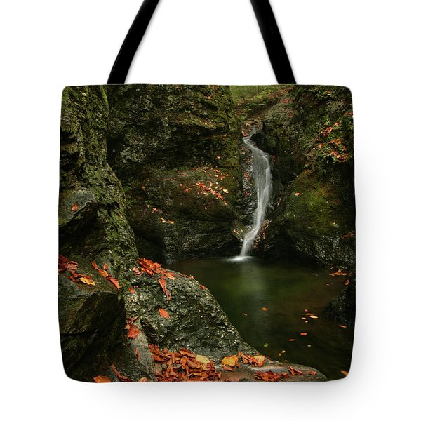 Water Falls As Autumn Starts Tote Bag by Karol Livote
