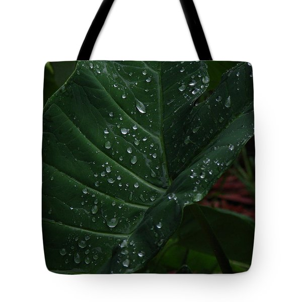 Water In My Ear Tote Bag by Greg Patzer