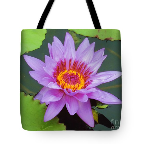 Water Lilies 005 Tote Bag by Robert ONeil