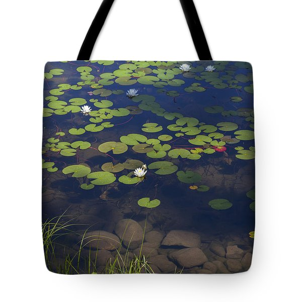 Tote Bag featuring the photograph Water Lilies by Fran Riley