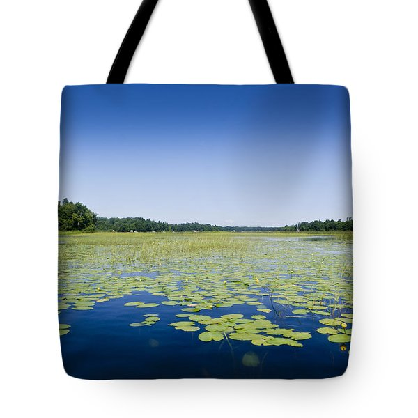 Water Lilies Tote Bag by Gary Eason