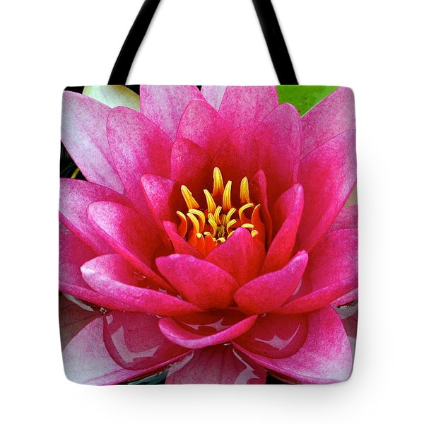 Water Lilly Tote Bag by Frozen in Time Fine Art Photography