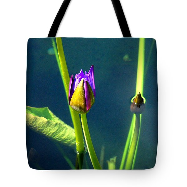 Water Lily 005 Tote Bag