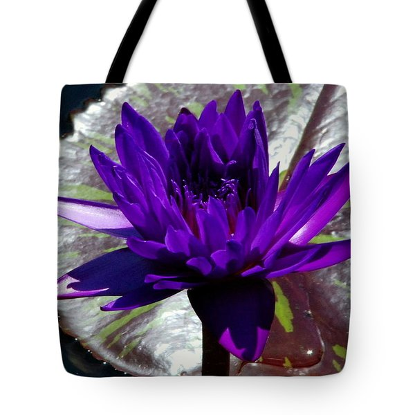 Water Lily 008 Tote Bag