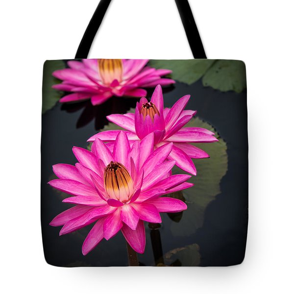 Tote Bag featuring the photograph Water Lilies In Pink by Phil Abrams