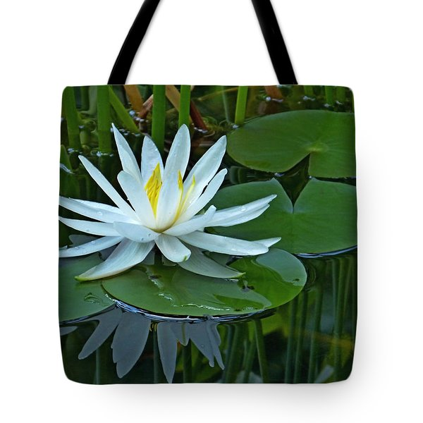 Water Lily And Reflection Tote Bag