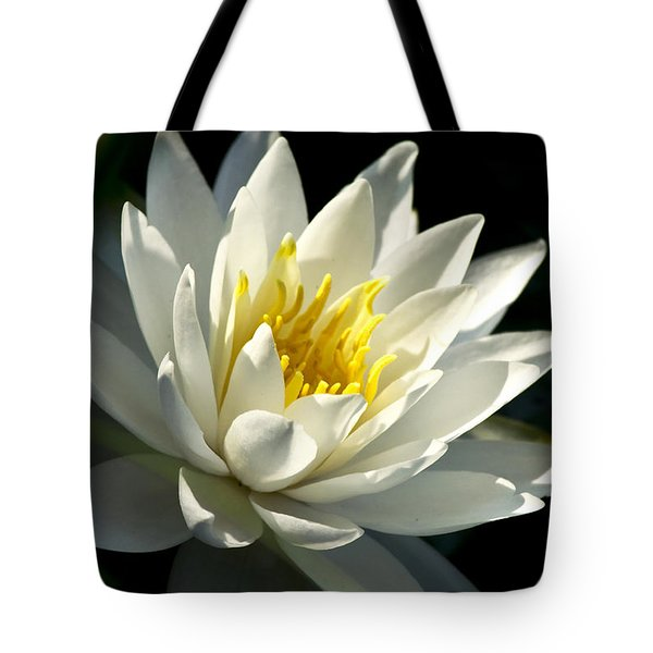 Water Lily Tote Bag by Christina Rollo
