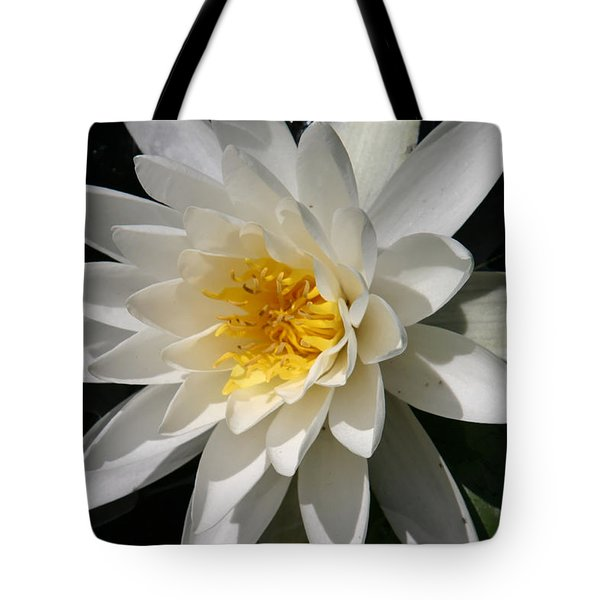 Tote Bag featuring the photograph Water Lily  by Denyse Duhaime