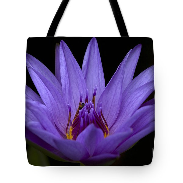 Tote Bag featuring the photograph Water Lily Photo by Meg Rousher