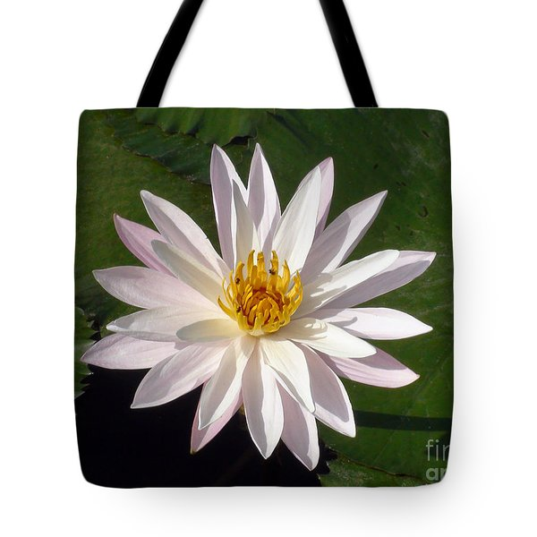 Tote Bag featuring the photograph Water Lily by Sergey Lukashin