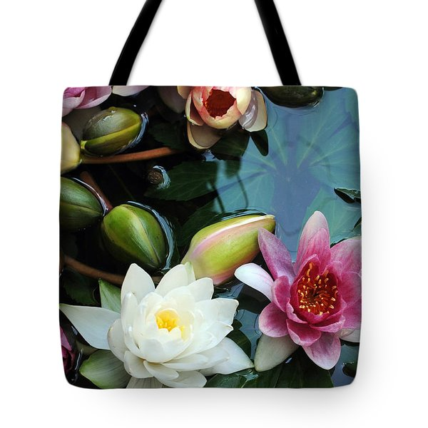 Tote Bag featuring the photograph Water Lily Series 1 by Haleh Mahbod