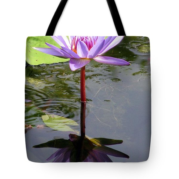 Water Lily - Shaded Tote Bag