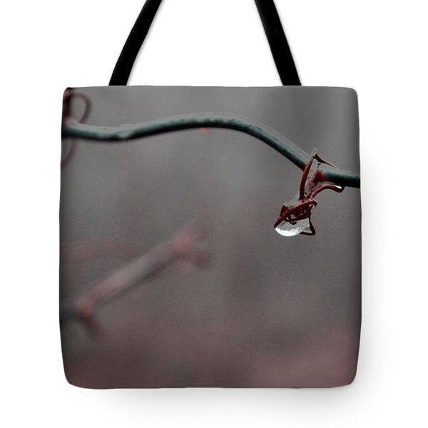 Water Retention Tote Bag by Carlee Ojeda