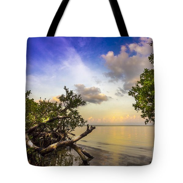Water Sky Tote Bag by Marvin Spates