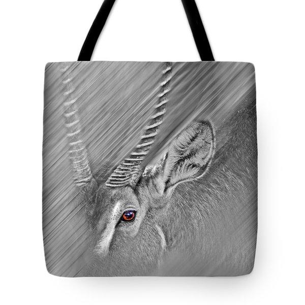 Waterbuck Tote Bag by Miroslava Jurcik