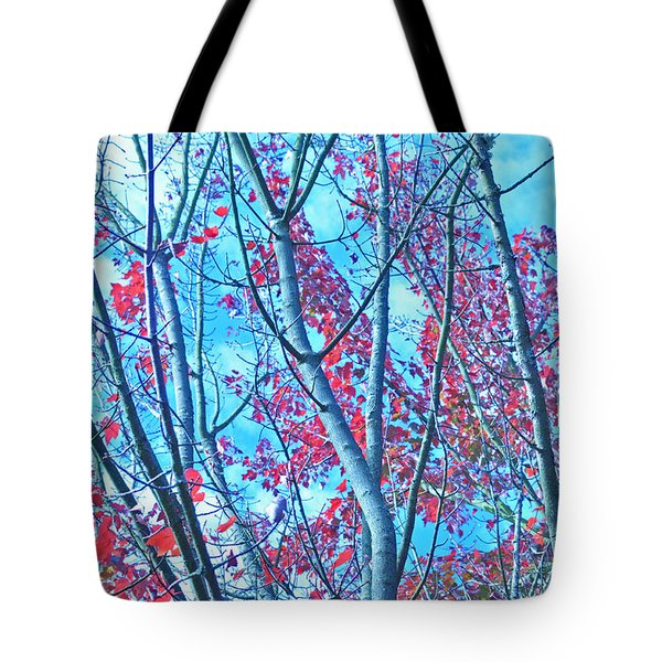 Tote Bag featuring the photograph Watercolor Autumn Trees by Tikvah's Hope