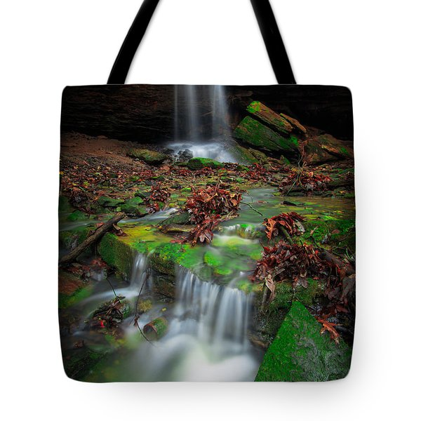 Frankfort Mineral Springs Waterfall  Tote Bag