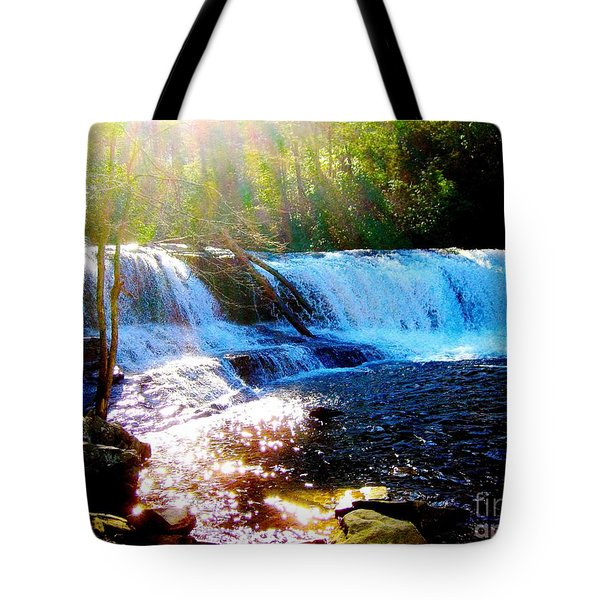 Waterfall At Dupont Forest Park Nc 2 Tote Bag by Annie Zeno