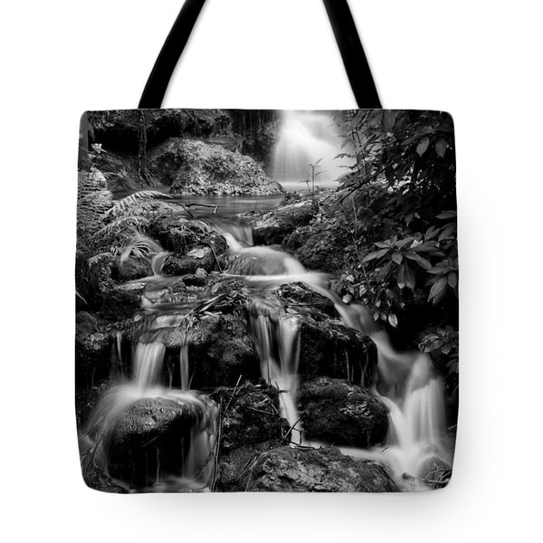 Waterfall At Rainbow Springs Tote Bag by Beverly Stapleton