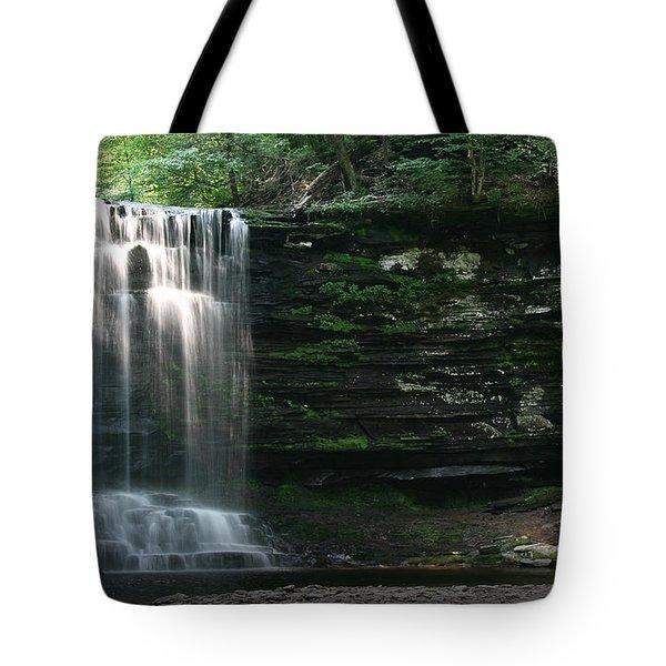 Waterfall At Ricketts Glen Tote Bag