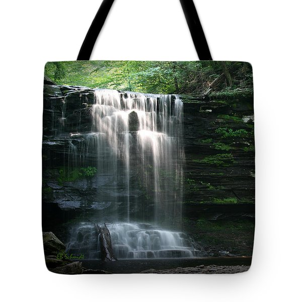 Tote Bag featuring the photograph Waterfall At Ricketts Glen by E B Schmidt