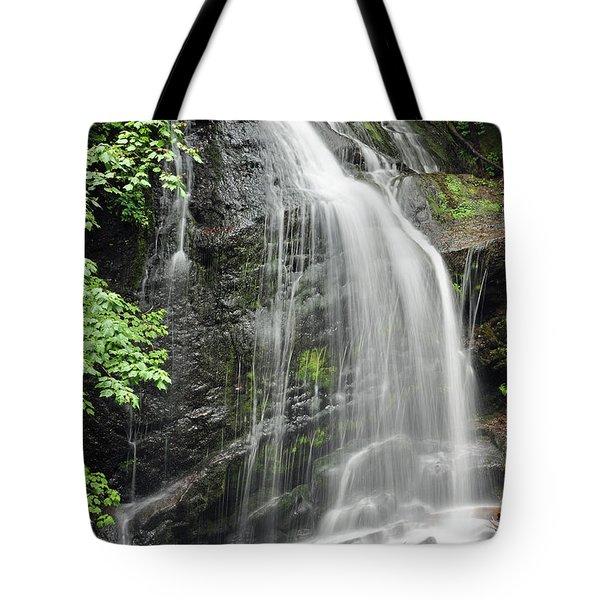 Waterfall Bay Of Fundy Tote Bag by Glenn Gordon