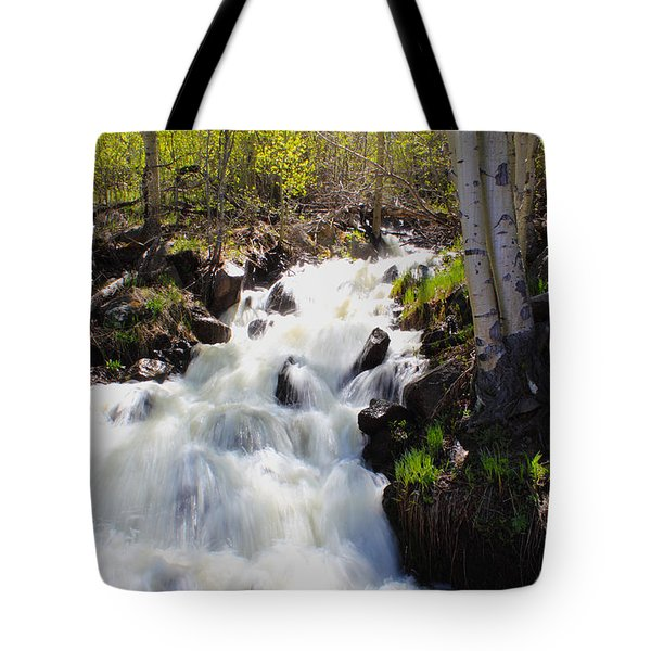 Waterfall By The Aspens Tote Bag