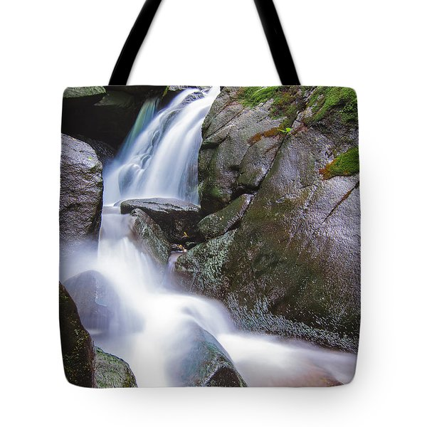 Waterfall Tote Bag by Eduard Moldoveanu